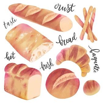 Raccolta di panetteria vari tipi di pane