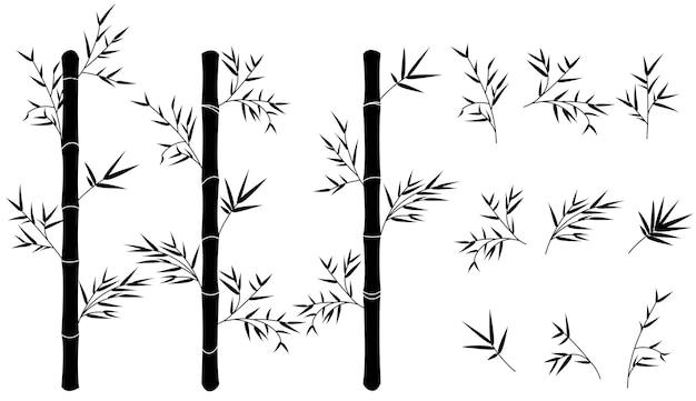 Rami di bambù e set di tronchi