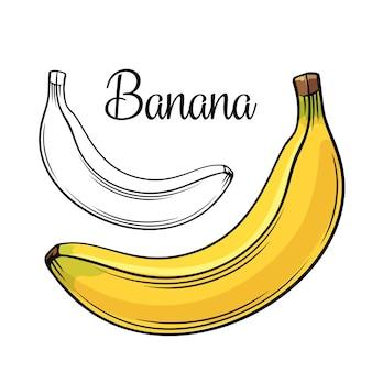 Icona di disegno di banana