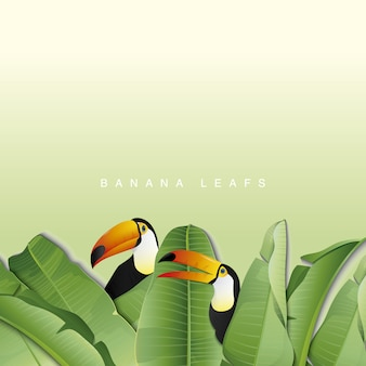 Foglie di banana con sfondo tucano