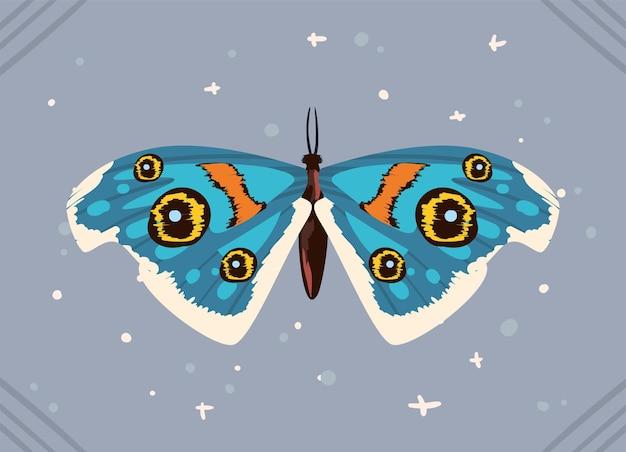 Banner con farfalla mistica