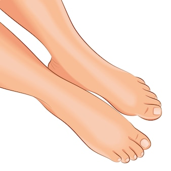 Gambe femminili nude, vista dall'alto. illustrazione vettoriale.