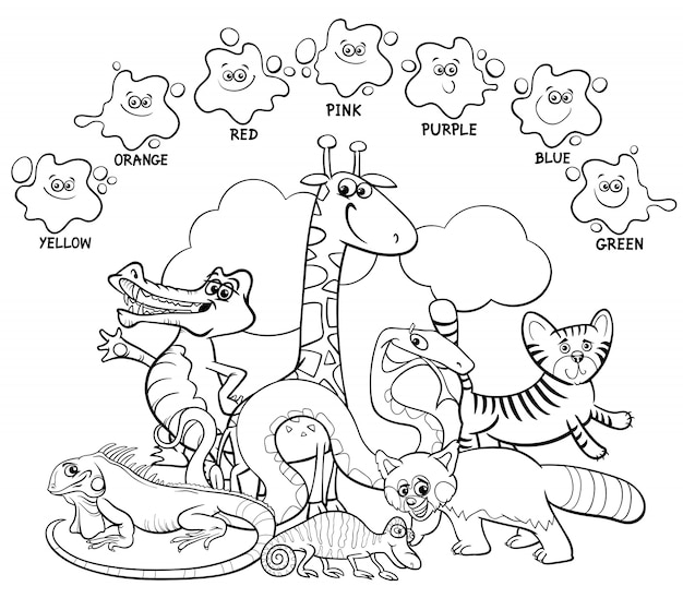 Coloring book basic colors for children