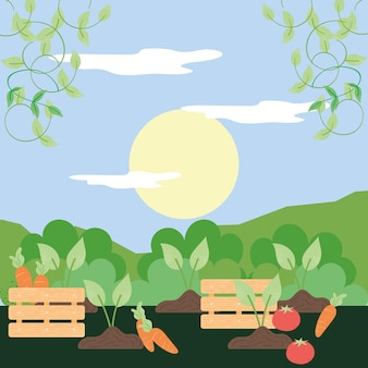 Cestini e verdure fresche