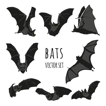 Insieme di vettore del pipistrello, illustrazione del pipistrello di halloween