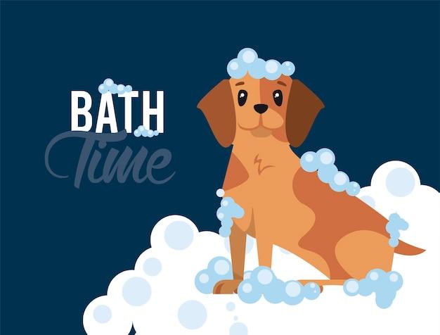 L'ora del bagnetto del cartone animato del cane