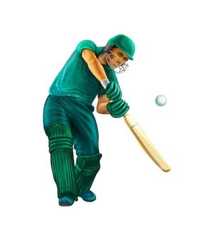Battitore che gioca a cricket. illustrazione realistica di vettore di vernici