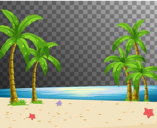 Scena della natura della spiaggia con trasparente