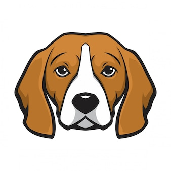 Cane da testa beagle