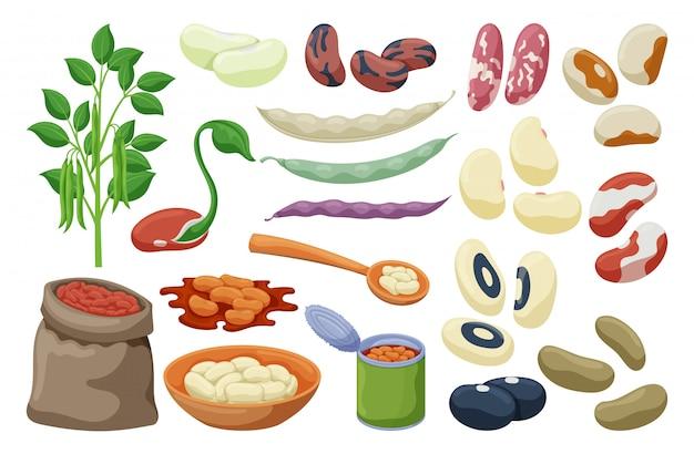 Set di fagioli di cibo