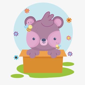 Orso in scatola cartone animato