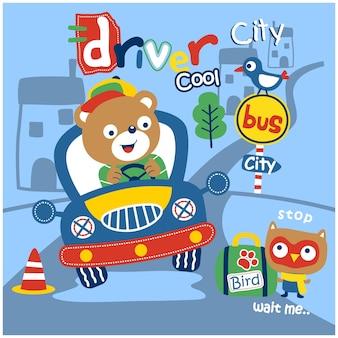Orso sulla macchina divertente cartone animato animale