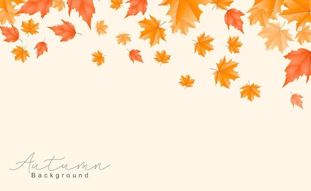 Bellissimo sfondo di foglie autunnali