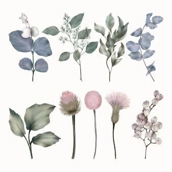 Bellissima collezione di foglie verdi e blu, fiori primaverili e bacche