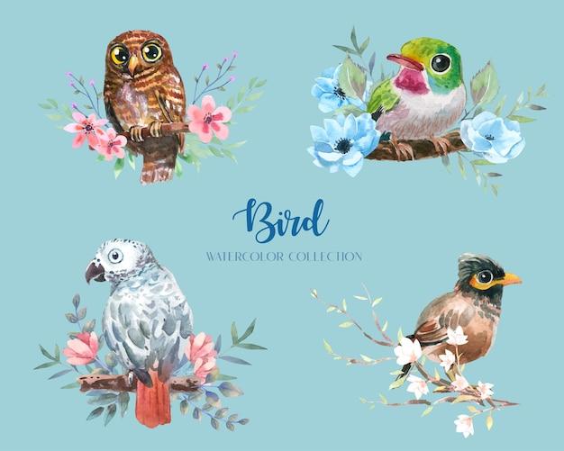 Bellissimo uccello colorato con raccolta di acquerelli di fiori e rami.