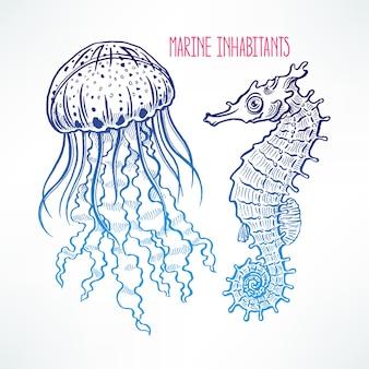 Bellissimo cavalluccio marino carino schizzo e meduse. illustrazione disegnata a mano