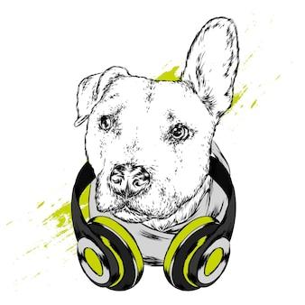 Bello cane nell'illustrazione delle cuffie