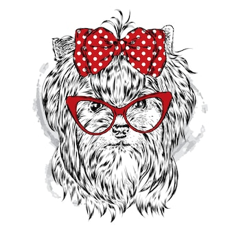Bel cane in abiti eleganti.