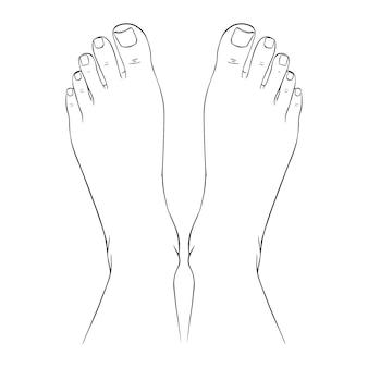 Bei piedi femminili a piedi nudi schizzo