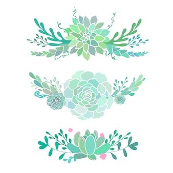 Bellissime composizioni floreali con piante grasse decorative svolazzi vettoriali