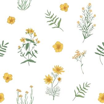 Bellissimo motivo floreale con fiori che sbocciano selvatici e erbe fiorite di prato su priorità bassa bianca