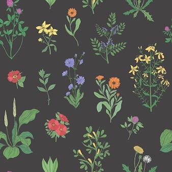 Bellissimo motivo floreale senza soluzione di continuità con erbe di prato sul nero