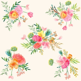 Raccolta dell'acquerello di bellissime composizioni floreali