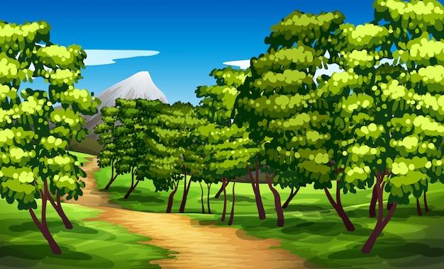 Bellissimo sfondo verde paesaggio