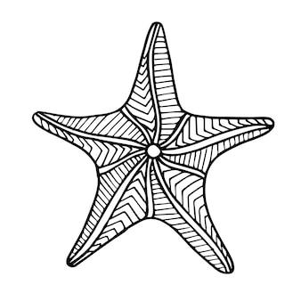 Stella marina in bianco e nero disegnata bella mano