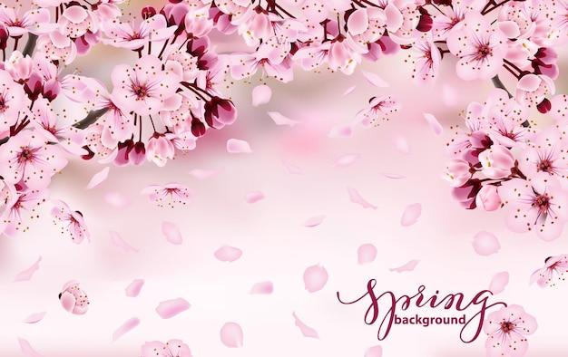 Bellissimo banner orizzontale con fiori di sakura in fiore rosa scuro e chiaro sfondo primaverile