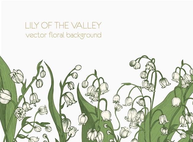 Bellissimo sfondo floreale orizzontale decorato con fiori di mughetto che crescono sul bordo inferiore su bianco