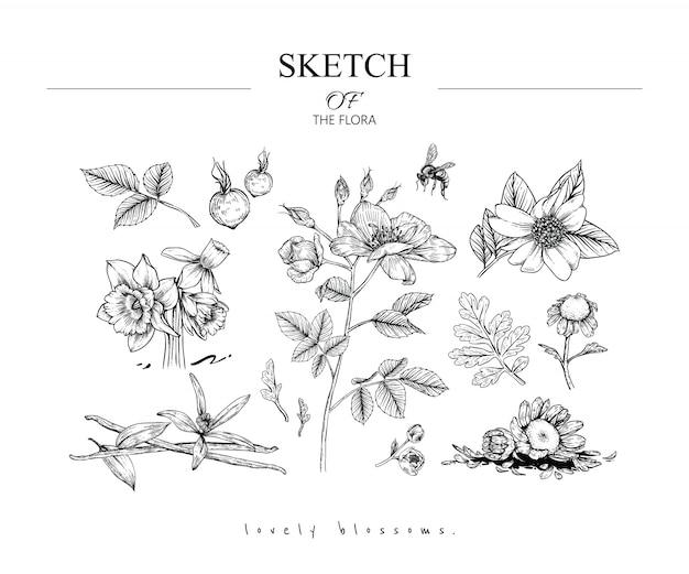 Bellissimi disegni di foglie e fiori
