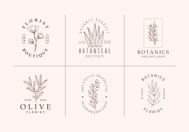 Bella collezione di logo floreale botanico minimalista