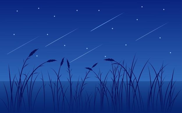 Bella illustrazione notturna con erba e stelle cadenti
