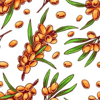Bello reticolo senza giunte arancione con rametti di olivello spinoso