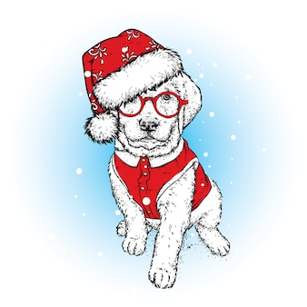 Un bellissimo cucciolo con un berretto di capodanno e un giubbotto. illustrazione.