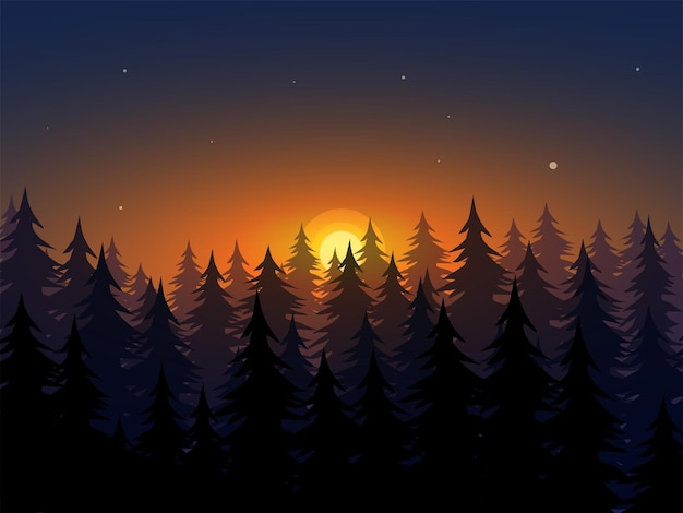 Bel tramonto nella foresta con alberi in silhouett