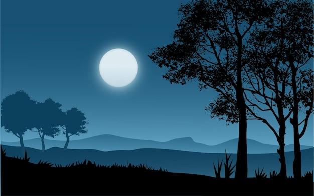 Bellissimi alberi nella notte al chiaro di luna