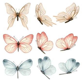 Bella collezione di farfalle ad acquerello in diverse posizioni