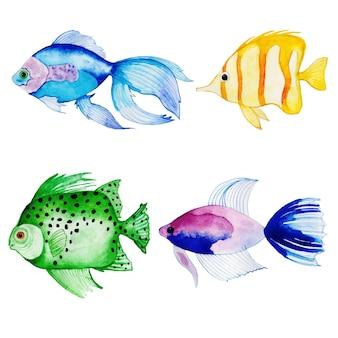 Bella collezione di pesci dell'acquerello