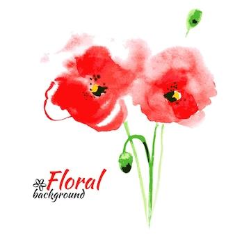 Bella pittura ad acquerello rosso papavero. illustrazione vettoriale. biglietti di buona festa della mamma