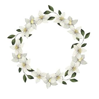 Bella corona dell'acquerello di delicati fiori bianchi con foglie