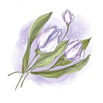 Bellissimi fiori bianchi su uno sfondo ad acquerello.