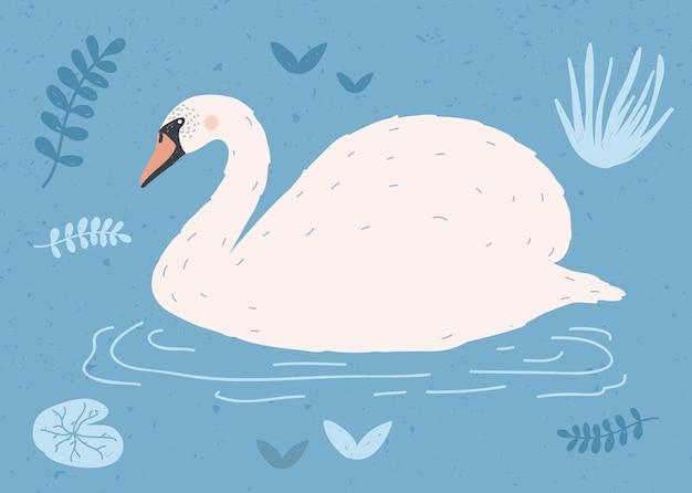 Bellissimo cigno bianco nuotare nell'acqua del laghetto tra le piante