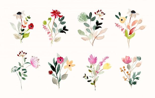 Collezione acquerello bellissimo bouquet di fiori selvatici