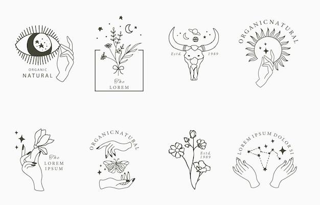 Collezione boho di bellezza con mano, occhi, farfalla, fiore, stella.