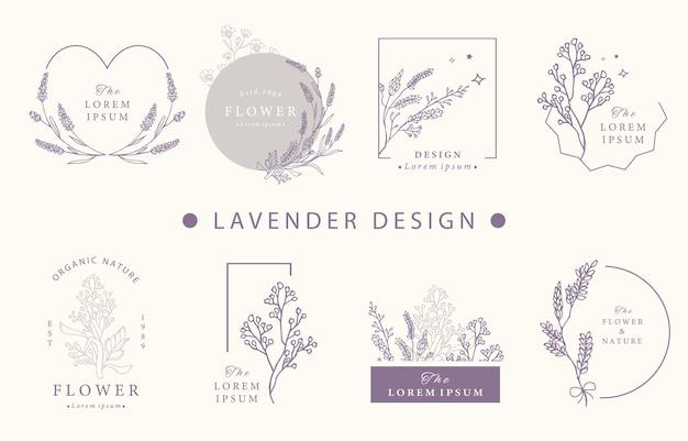 Collezione di design occulto di bellezza con lavanda