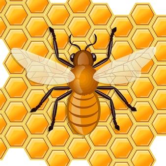 Ape che si siede sul favo di miele. Vettore Premium