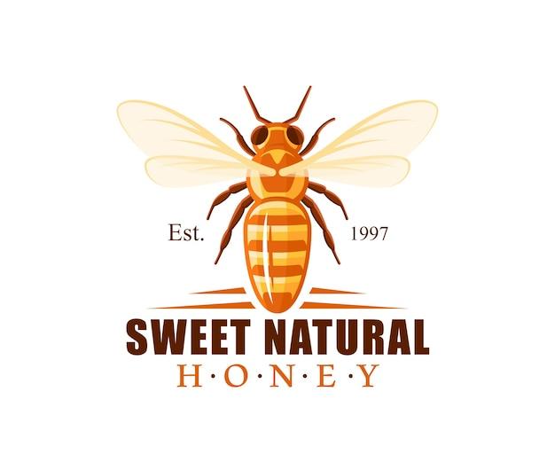 Bee, vista dall'alto isolata. logo di miele, concetto di emblema. Vettore Premium