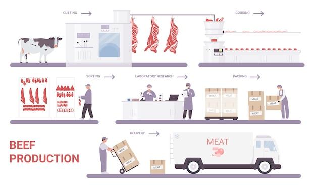 Produzione di carne bovina sull'illustrazione infografica di vettore del processo di fabbrica di carne.